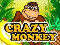 Игровые Crazy Monkey в автоматах на деньги